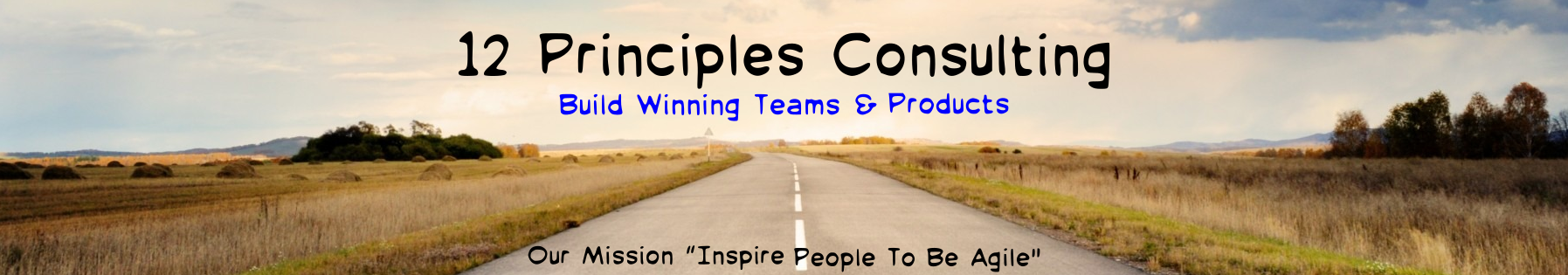 12 Principles Consulting
